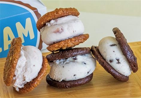 ice cream sandwich pack vegan